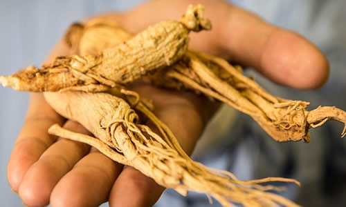 Ginseng y sus contraindicaciones