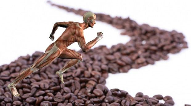 Relación entre cafeína y masa muscular