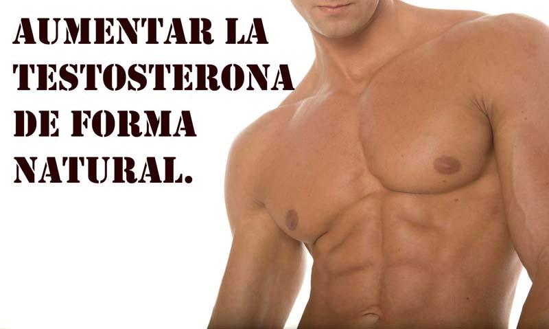 Resultat d'imatges de aumentar testosterona