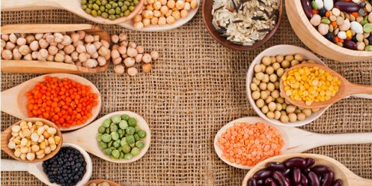 Proteína vegetal: 5 Alternativas a proteínas de origen animal