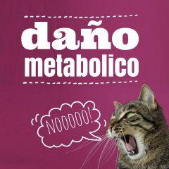 ¿Qué es el daño metabólico?