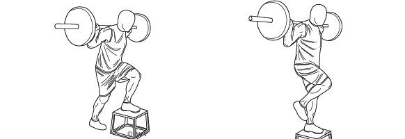 Como realizar el step con barra