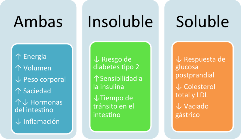 Diferencias y características de la fibra soluble e insoluble