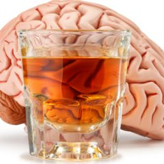 Descubre los daños del alcohol al cerebro