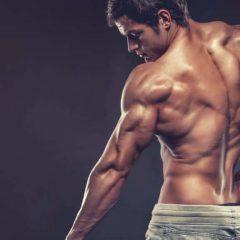 4 entrenamientos para brazos construción de musculo