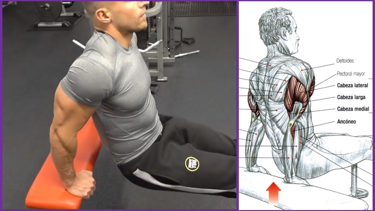 Y pecho rutina triceps para fortalecer
