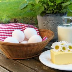 Los micronutrientes que no deberían faltar en tu dieta alimentaria