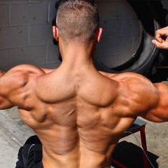10 Entrenamientos enfocados en la espalda