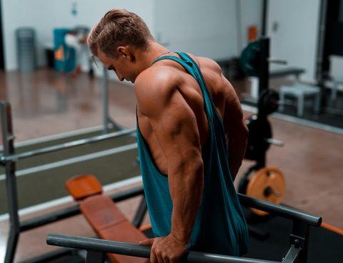 entrenador personal musculación online