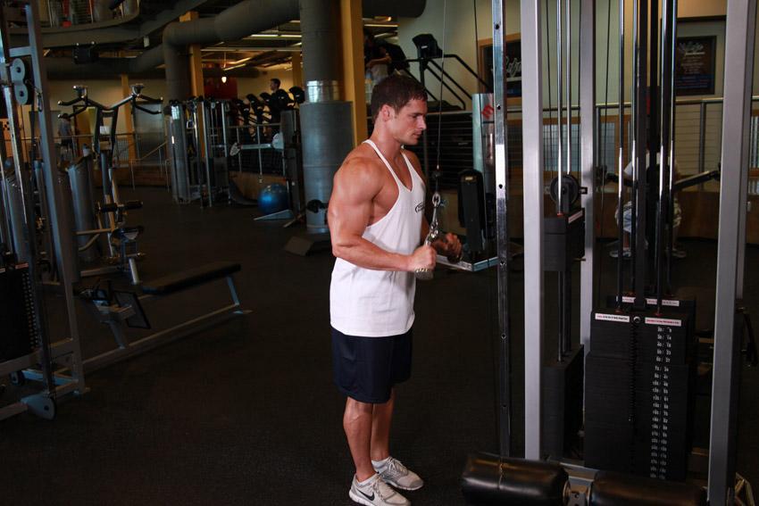 Desplazamiento descendente de tríceps – accesorio de barra en V