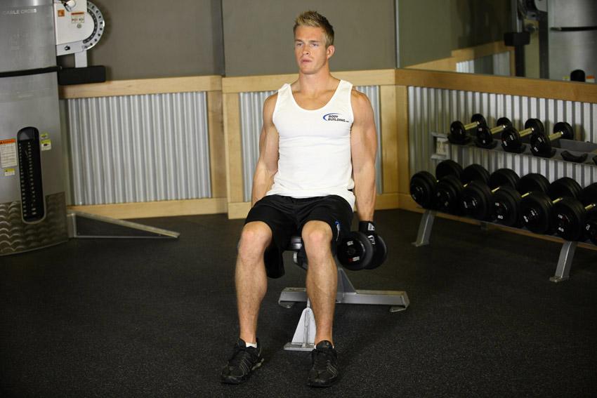 curl de biceps con mancuernas sentado o de pie